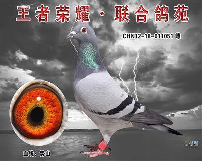 细川势山(势山金母)