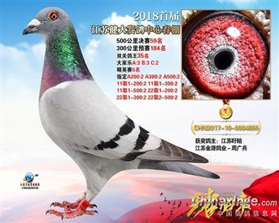 2018年江苏健大赛鸽中心决赛59名