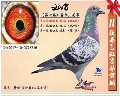 2018春陕西飞虹公棚决赛417名