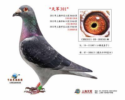2011-09-189301雄