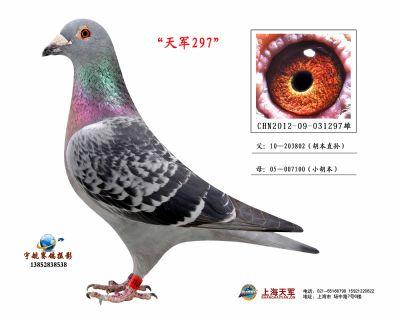 2012-09-031297雄