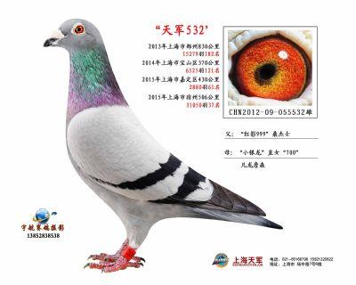 2012-09-055532雄