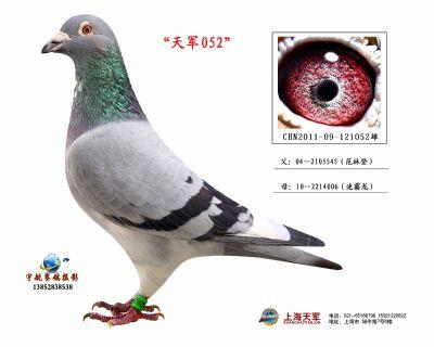 2011-09-121052雄