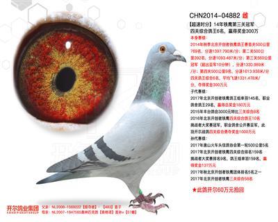 【超速�r分】�F��第三�P冠�,�C合��王6名