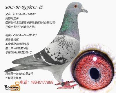 长城8713