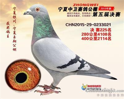 CHN2015-29-0233021
