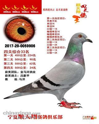 CHN2017-29-0059906