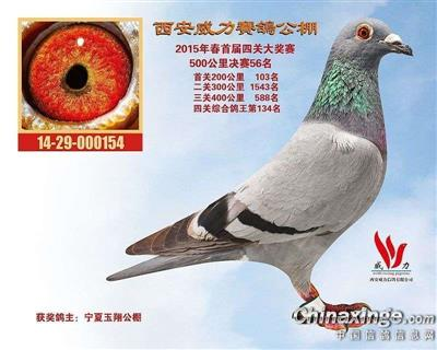 CHN2014-29-000154