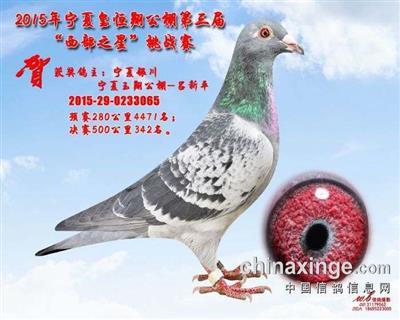 CHN2015-29-0233065