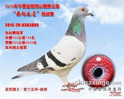CHN2015-29-0383885