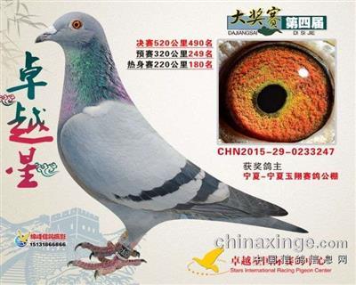 CHN2015-29-0233247