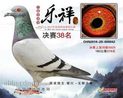 CHN2014-29-000042