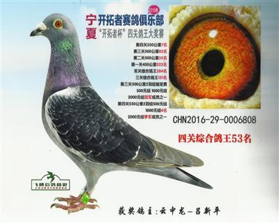 CHN2016-29-0006808
