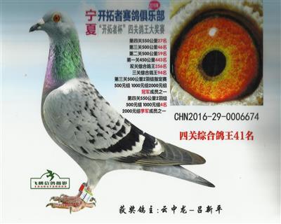 CHN2016-29-0006674