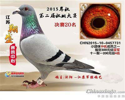 15年江苏翔盛赛鸽中心决赛二十名