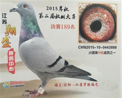 15年江苏翔盛赛鸽中心决赛189名