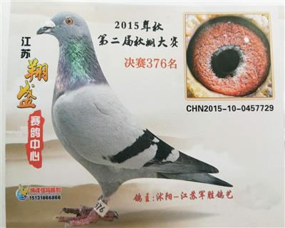 15年江苏翔盛赛鸽中心决赛376名