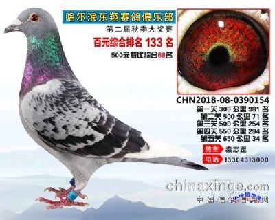 2018年东翔赛鸽俱乐部成绩鸽