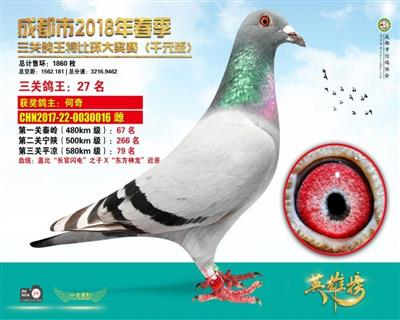 千元版/三关鸽王27名