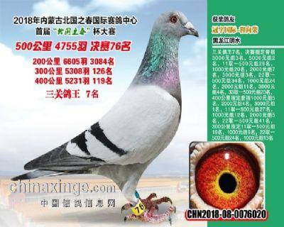 关注快手送鸽:165545522