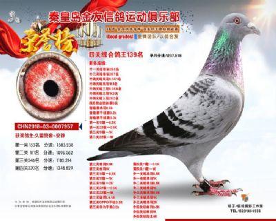 金友俱乐部综合139