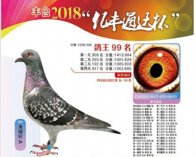 2018年秋季.北京丰台四关综合99名.