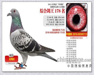 2018-北京开创者.四关综合178名