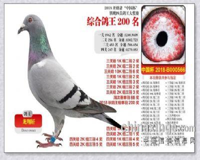 2018-北京开创者.四关综合200名.