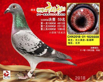 千羽千翔(59名)2018-01-1026608