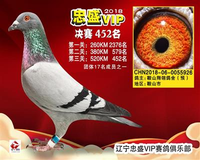 VIP926