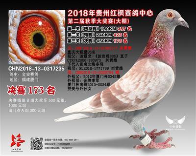 2018贵州红枫赛鸽中心173名