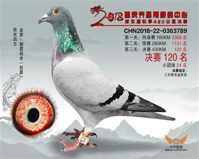 重庆齐圣翔决赛120名