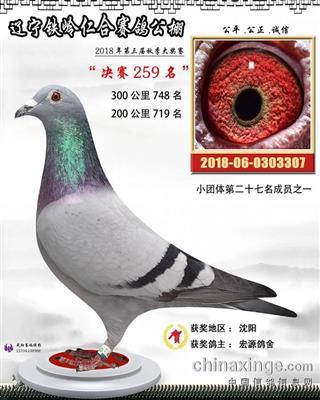 辽宁铁岭仁合公棚决赛259名