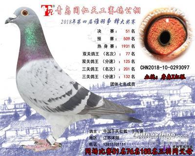 18年青岛同仁天工决赛51名