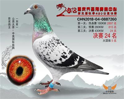 18年重庆齐胜翔公棚秋季决赛24名