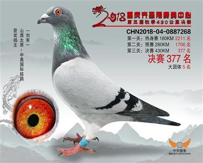 18年重庆齐胜翔公棚秋季决赛377名