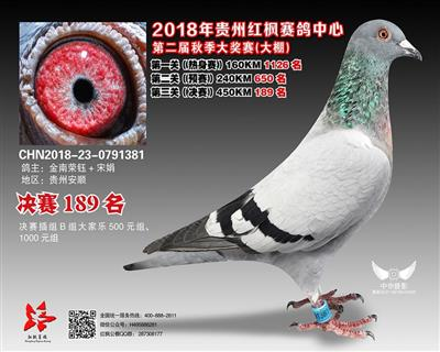 贵州红枫大棚决赛盖比189名