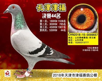 津福-657