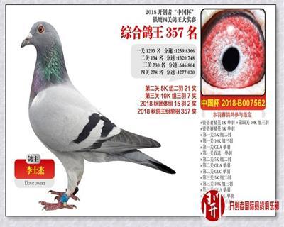 2018年北京开创者铁鹰四关鸽王赛