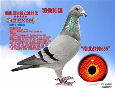南北战神555