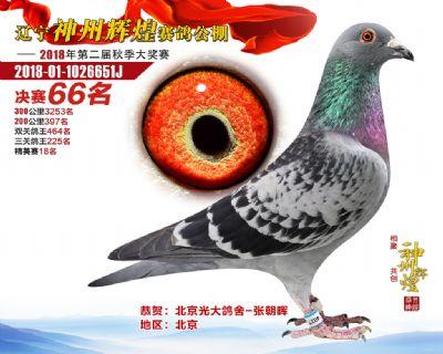 神州辉煌(66)201-01-1026651