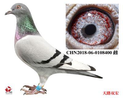 CHN2018-06-0108400
