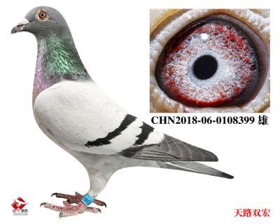 CHN2018-06