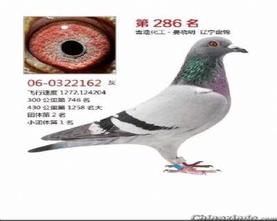QQ图片20181217113206