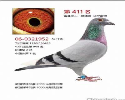 QQ图片20181217113216