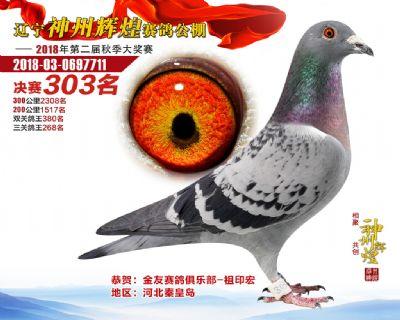 神州辉煌303