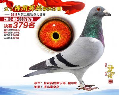 神州辉煌379