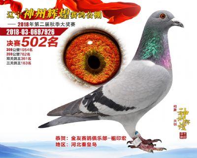 神州辉煌502