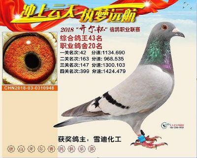 QQ图片20181221170449