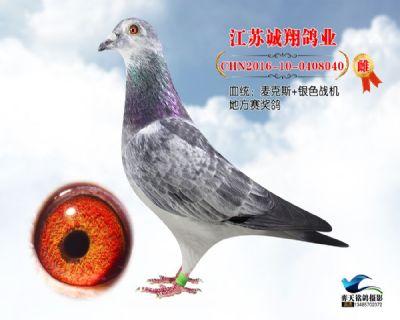 53花黄眼